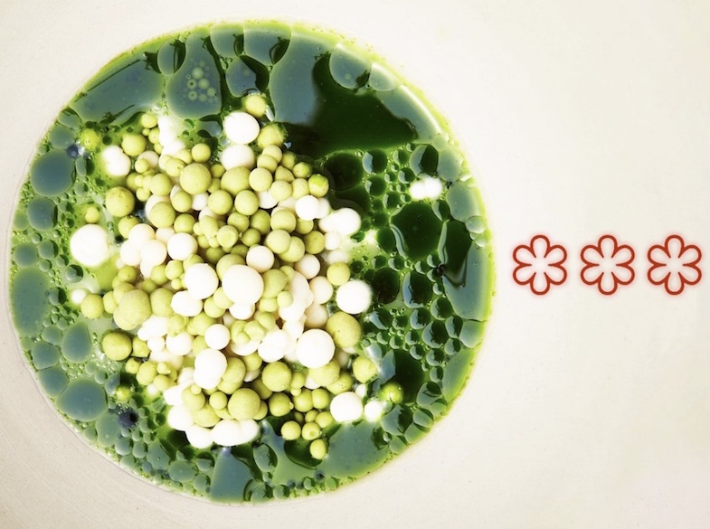 Culinary-Zinema-blog